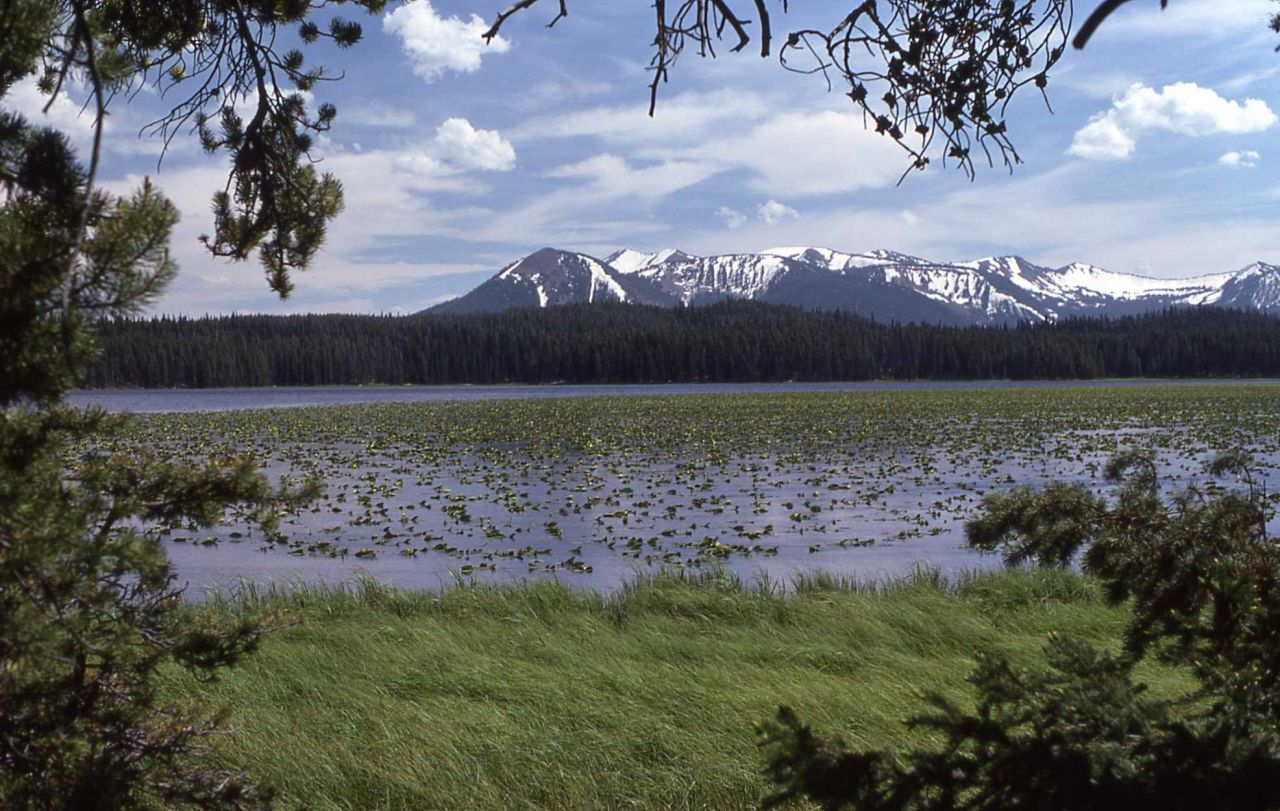Riddle Lake, Mt Sheridan & Red Mountains Photo