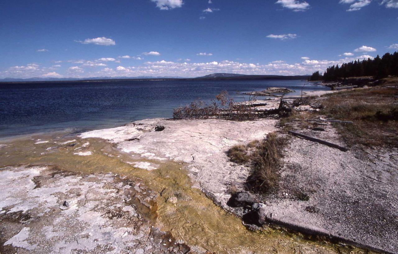 West Thumb shore area of Yellowstone Lake Photo