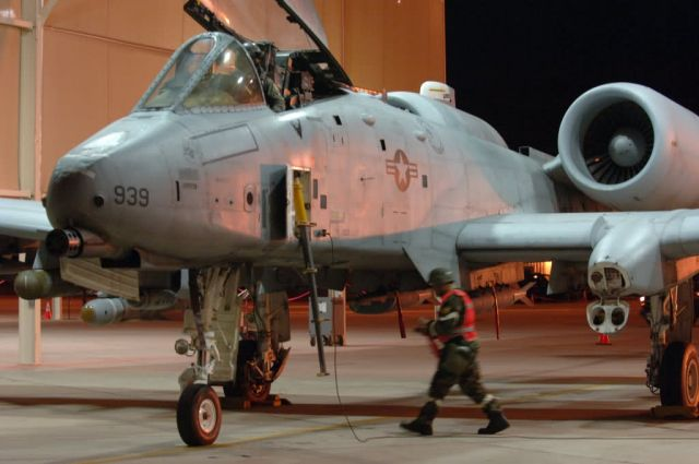 A-10 Thunderbolt II - Exercise Bushwacker 06-02 Picture