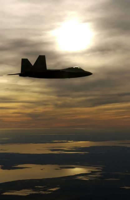 F/A-22 - Celebrating 100 years of flight Picture