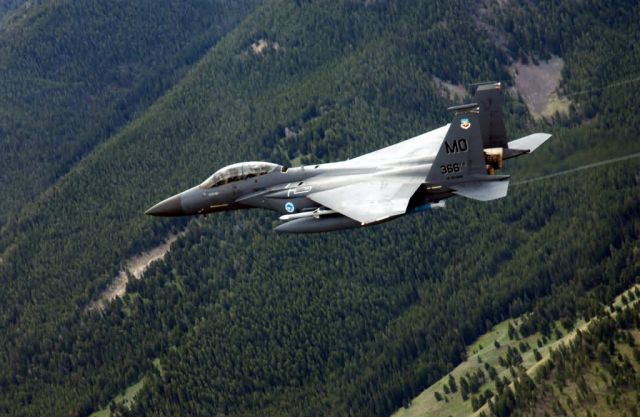F-15E Strike Eagle - Lone Eagle Picture