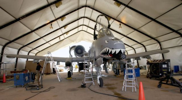 A-10 Thunderbolt II - A little shade Picture