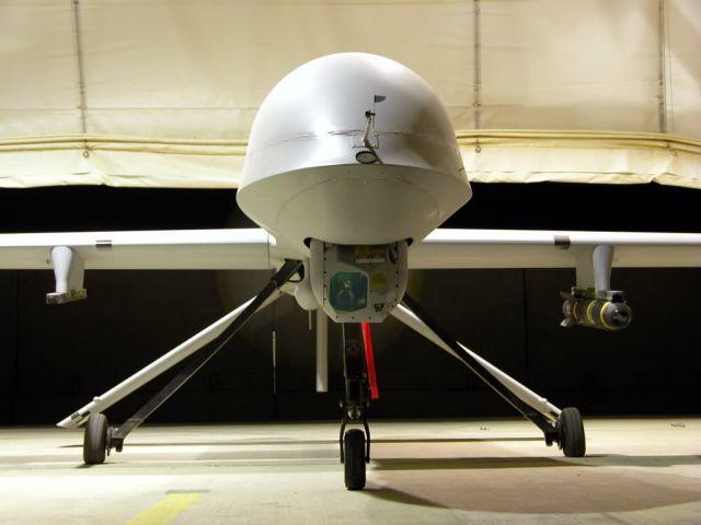 RQ-1 Predator - Predator Picture