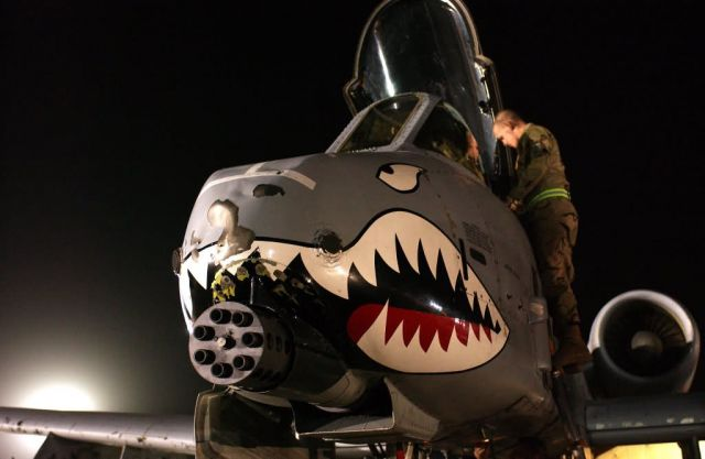 A-10 Thunderbolt II - Tank killer Picture