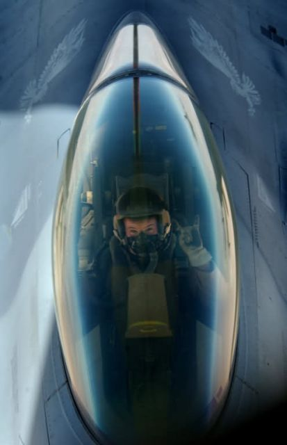 F-16 Fighting Falcon - Call me weasel? Picture