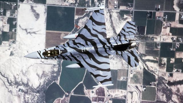 F-16C - Tiger, tiger Picture
