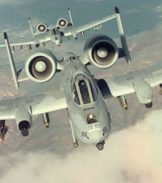 A-10 Thunderbolt II - Warthog pair Picture