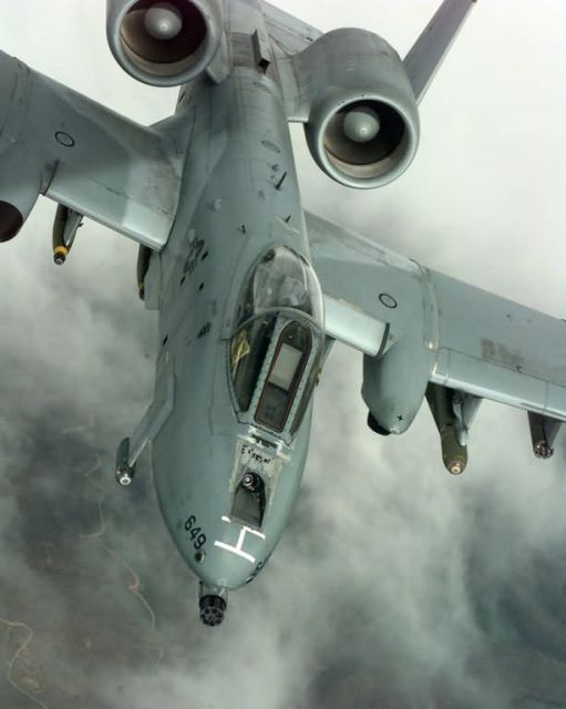 A-10 Thunderbolt II - Thunderbolt II Picture
