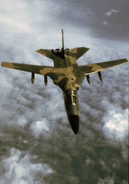F-111 Aardvark - F-111 Aardvark Picture
