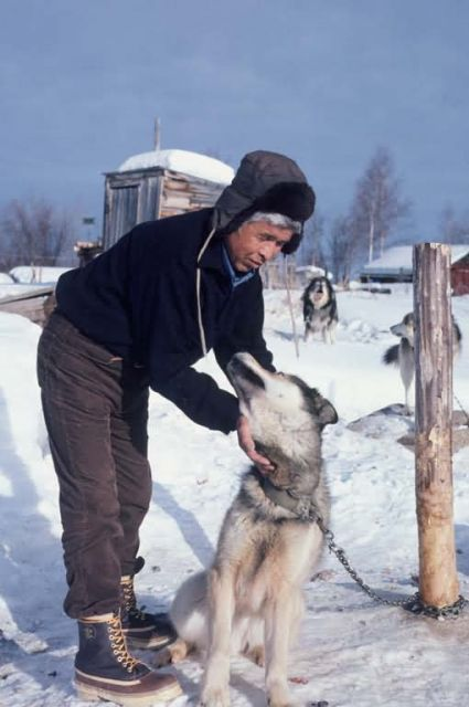 Local resident with sled dog Picture