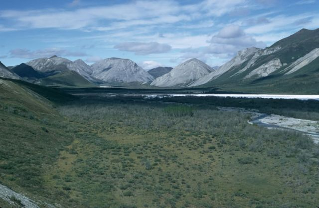 Junjik River Valley in Summer Picture
