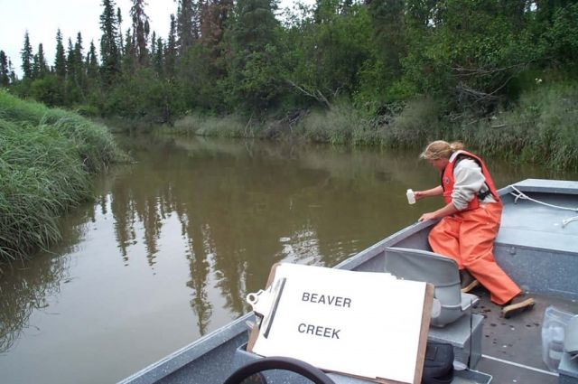 Julie Laker Collects a Water Sample from Beaver Creek Picture