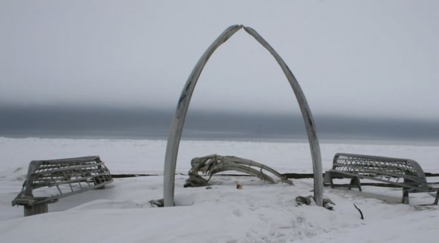 Whale Bone Rib Arc and Skin Boat Frames at Barrow, Alaska Picture