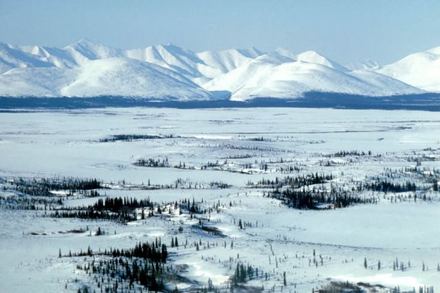 Noatak River - Aerial View Picture