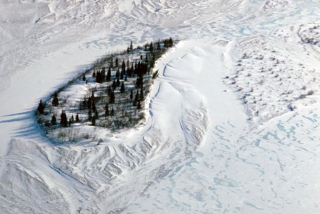 Noatak River Island - Aerial Winter View Picture