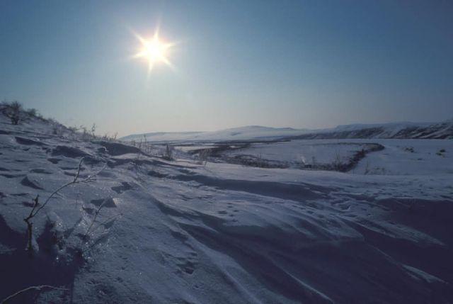 Noatak River Snow Scene Picture