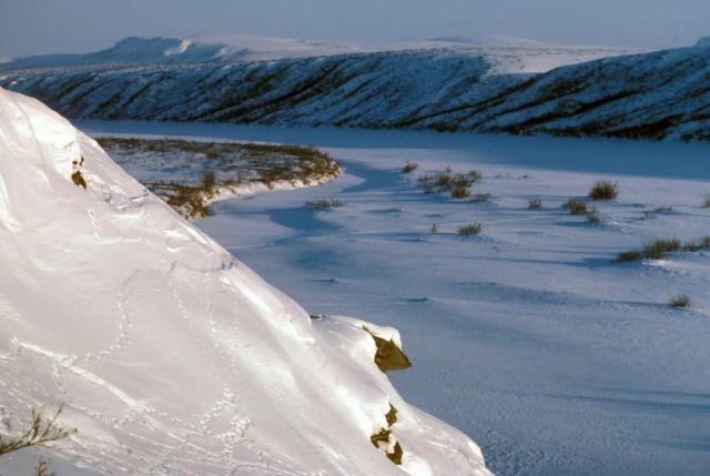 Noatak River Picture