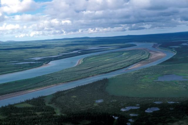Noatak River Flats in Summer Picture