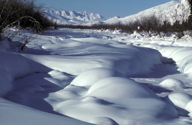 Wind River in Winter Picture