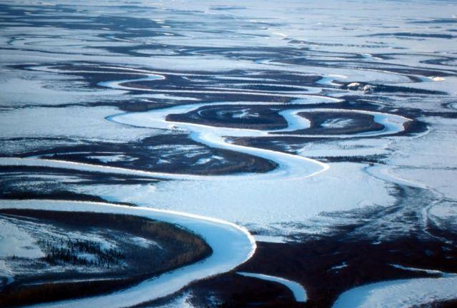 Selawik River in Winter Picture