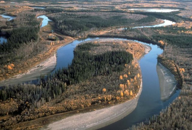 Yukon Flats River and Oxbows Picture