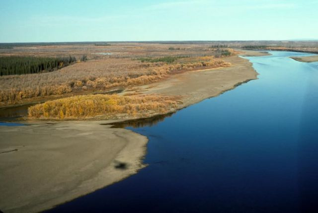 Yukon River Fall Colors - Aerial View Picture
