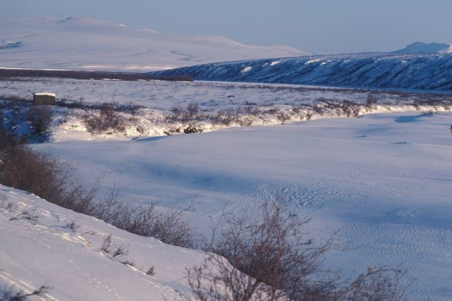 Noatak River Winter Scene Picture