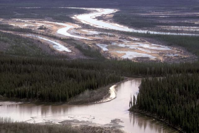 Lower Sheenjek River Picture