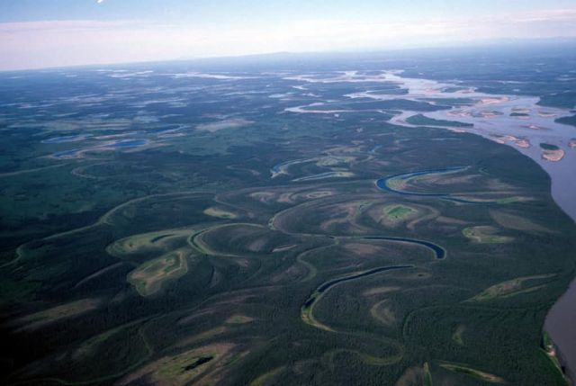 Yukon River - Aerial View Picture