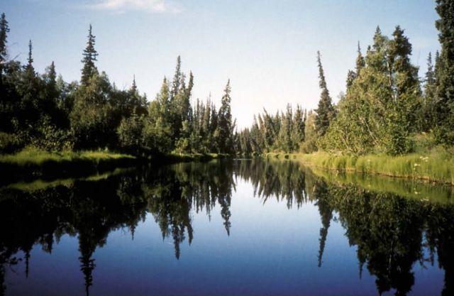 River Scene Picture