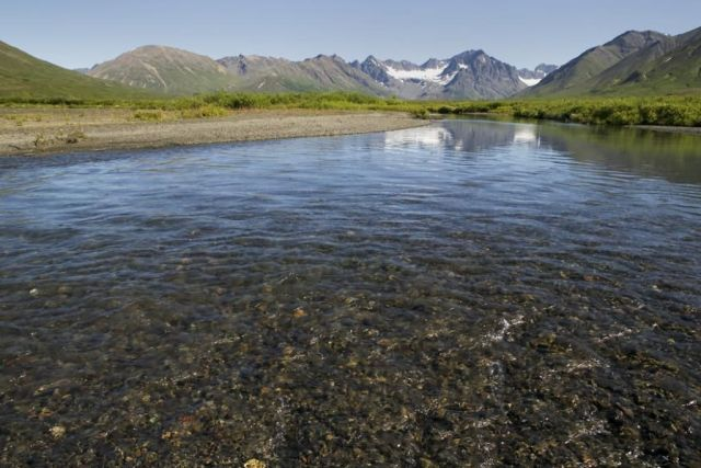 Summer View of a River and Mountains in the Togiak Refuge Picture