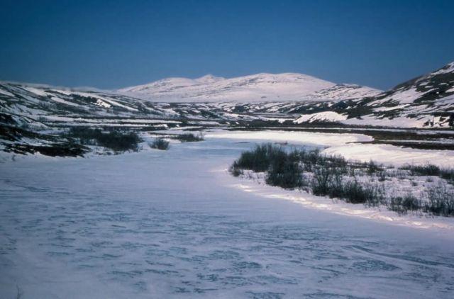 Kisaralik River in Winter Picture