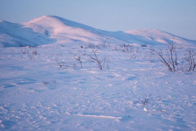Noatak River in Winter Picture