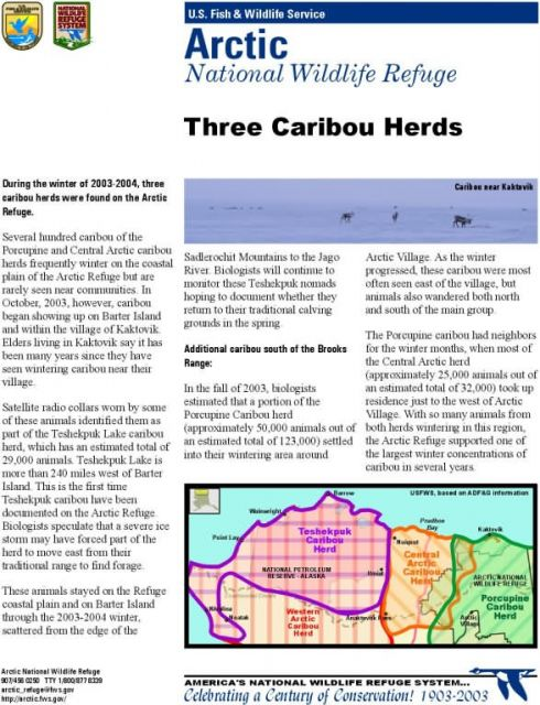 Information Map: Three caribou herds in Arctic Refuge 2003-04 Picture