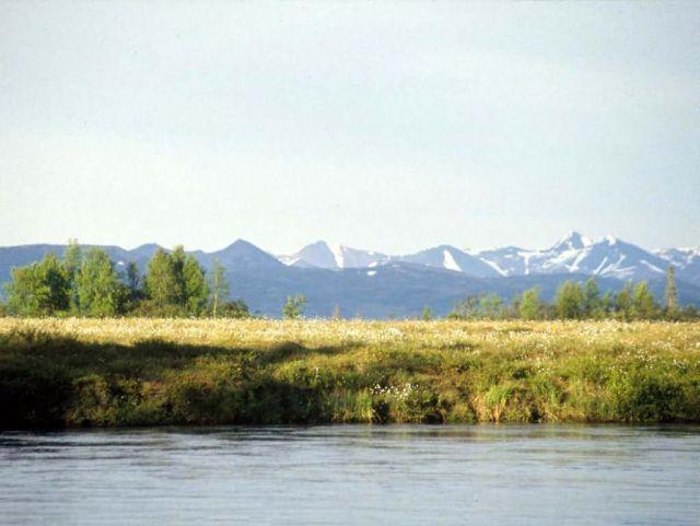 Tuluksak River Picture