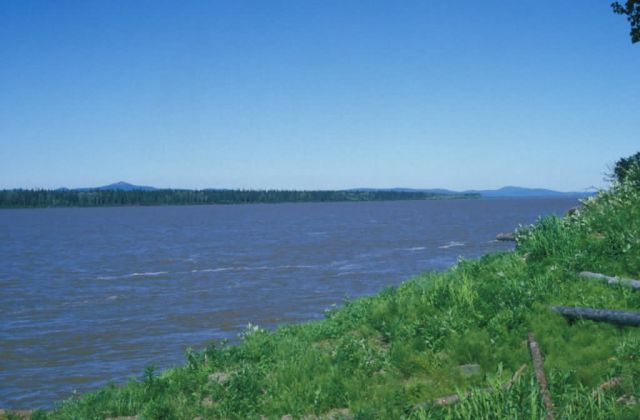 The Yukon River at the Village of Kaltag Picture