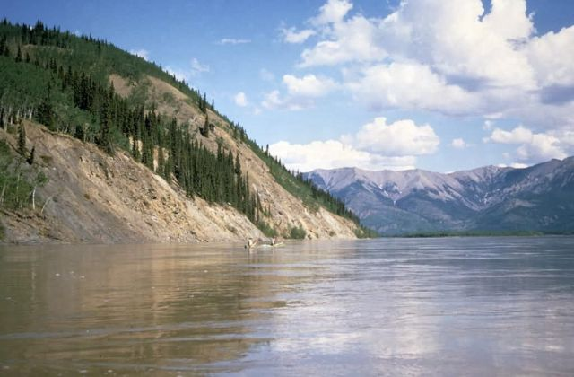 Canoeing the Yukon River Picture