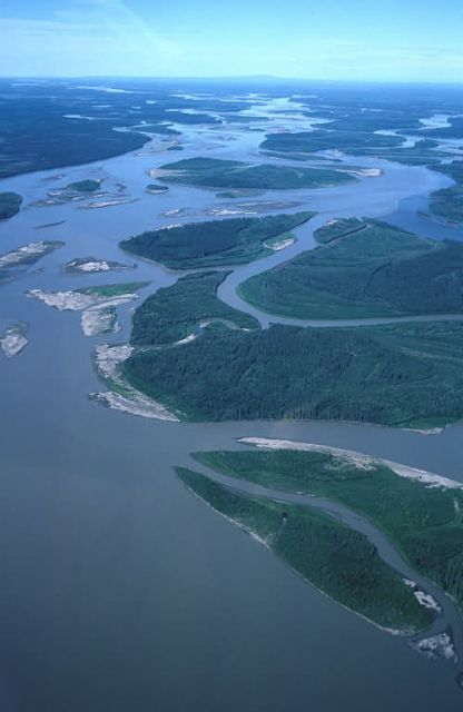 Yukon River in Summer - Aerial View Picture