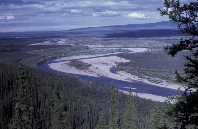 Coleen River Picture