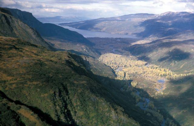 Kizhuyak Bay, Kodiak Picture