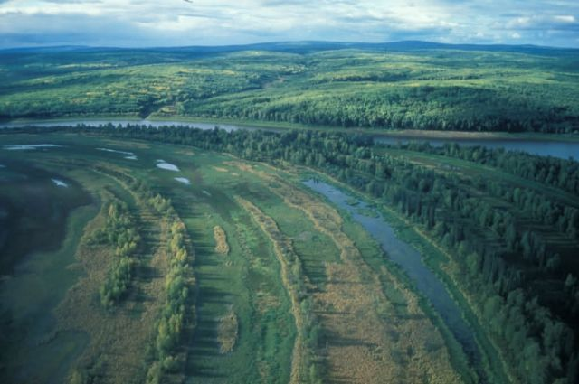Innoko River Picture