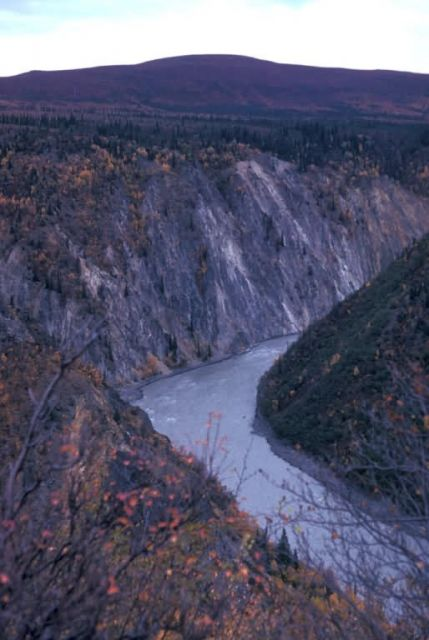 Susitna River Canyon Picture