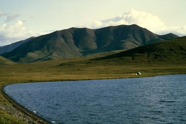 Noatak River in Summer Picture