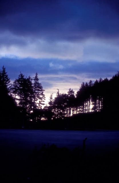 Kodiak Sunset on Long Island Picture
