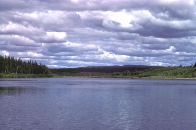 Nowitna River in Summer Picture