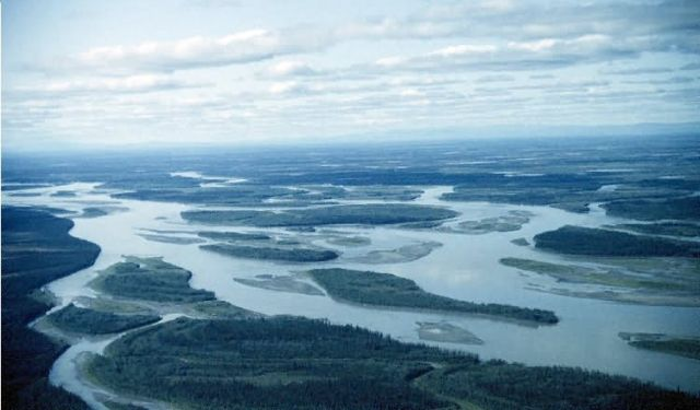 Meandering Yukon River Picture