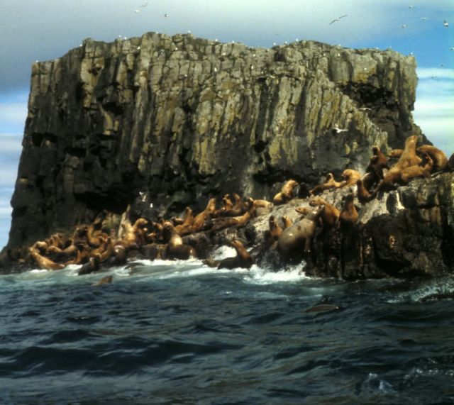 Aiugunak Pinnacles, Alaska Peninsula Unit,1980 Picture