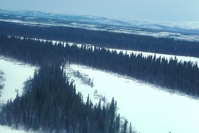Innoko River Basin Picture