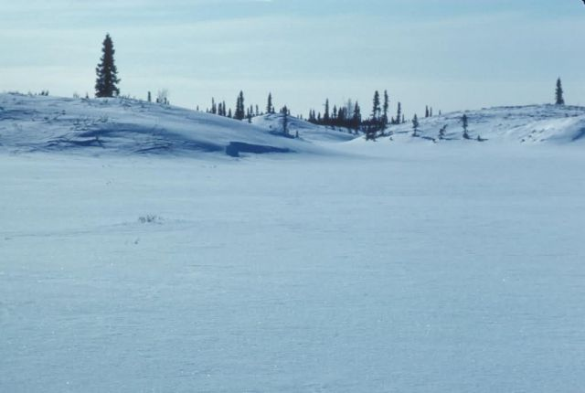 Mud River Drainage in Winter Picture
