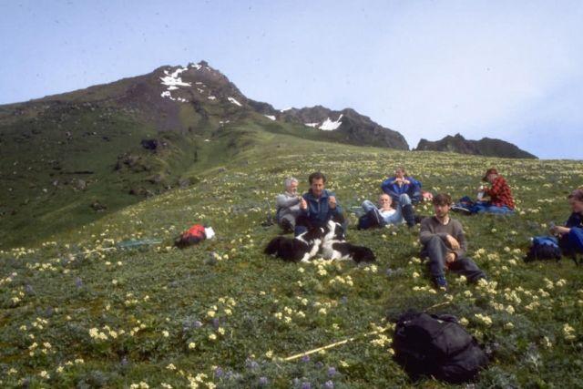 Aleutian Cackling Goose Survey Crew Picture